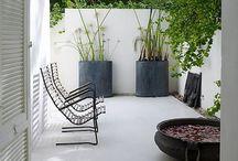 Garden Life / by Katey Dutton