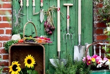 Gardening / by Ann Latimer