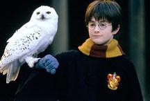 Harry Potter / by Tara G.