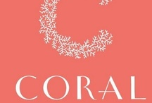 Coral / by Susan Ashley Michael