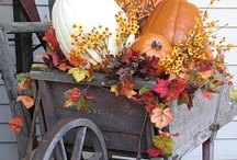 Fall decoration / by Adelina Mendez
