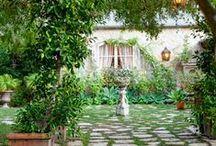 Gardening / by Carolina Herlle
