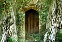 Doors / by Megan Greene