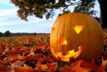 Halloween / by Stephanie Dunson