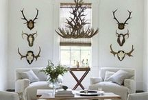 Decor {Living Room} / Living room, dining room, family room, home décor ideas.  Simple, classic, contemporary, rustic. / by Amanda Santee