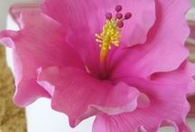 Sugar Flowers / by Judy Wong