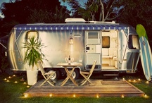 Camping / by Maggie Carlson Mantovani