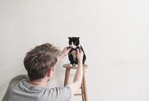 Meow!? / by Tolga Ulker