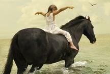 Equus. / by Amelia Jackson