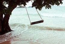Swings / by Jill Berger