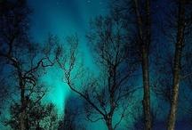 Aqua | Turquoise | Teal  / by Julie Keeter