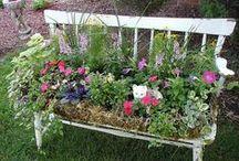 Gardening ideas / by Donna Schaner