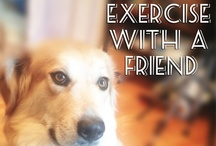 Should do, Might do - exercise, etc / by Cheryl Simonis