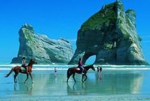 Australia & New Zealand / by Suzanne