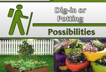 Dig-in or Potting [Gardening] / #Gardens, #Landscaping / by C. A. Hutsell
