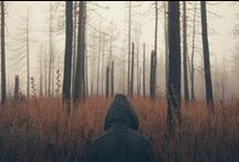 m e a d o w l a r k / Camping, meadows, mountains, farms, rustic, rural, hiking. / by Tris Sara Ward