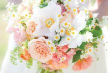 Wedding pics / by DeLacerda Photography
