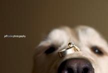 Wedding / by Mi Mlli