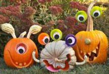 halloweenie / by Michelle Pyron