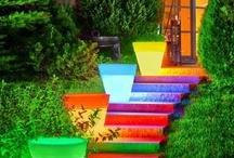 Outdoor ideas / by Vicki Chrisman-Breitmayer