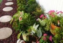 Gardening & Outdoor Designing / by Michele Maynard