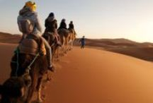 NEW! Morocco, Marrakesh / by Inspirato with American Express