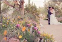 vegas wedding | gardens / Gorgeous garden weddings in Las Vegas / by Little Vegas Wedding