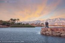 vegas wedding | engagements / Engagement photos and proposals in Las Vegas / by Little Vegas Wedding