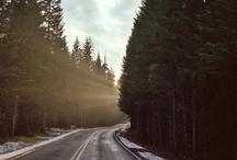 Path / by Jonas Brunskog