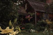 Dwellings in Nature / Future Abode / by Jocelyn Larsen