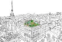 Parisian Vacay / by Amber Corbi