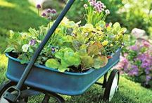 There's No Place Like...Gnome / Simplify gardening tasks and yard work with these handy tools. Find a wide selection of accents and accessories that make outdoor chores a snap! / by Solutions Catalog