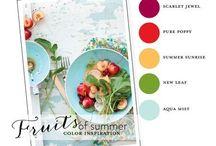 Color Inspiration / by Jennifer Holmes