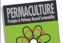 Permaculture / by Daniel Martin