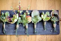 Boutonnieres / by Andrea Rachel