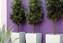 Outdoor Spaces II / by StyleCarrot • Marni Katz