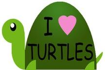 I love Turtles / by Yleana de Montiel