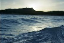 Surf / by TruckerDeluxe Inc.