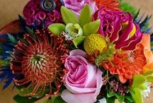 Flowers, Flowers, Flowers / by Mari Kam