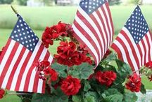 STARS & STRIPES FOURTH OF JULY / God bless America...From sea to shining sea! / by Candy Allen