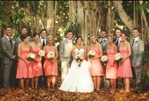 Wedding Ideas / by Courtney Mcgonnell