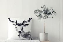 Home Decor Ideas / by Katie Anderson