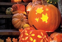 Halloween Ideas / by Amanda Grace