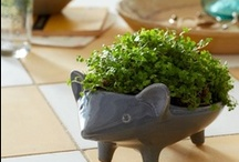 housewares + design / by Catherine T