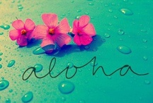 "Aloha ""The Islands"" / by Sherry Hepper"