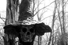 Halloween / by Kim Ege