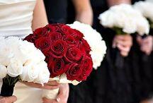 WEDDING / by Rachel Hutchens