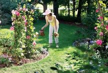 Garden Stuff / Idea, projects and things I like for my yard and garden. / by Vanessa Priddy-Lyons
