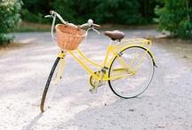 Bicicletas / by Victoria Pichel