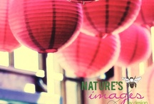 Nature's Images By Design Photos / by Nature's Images By Design